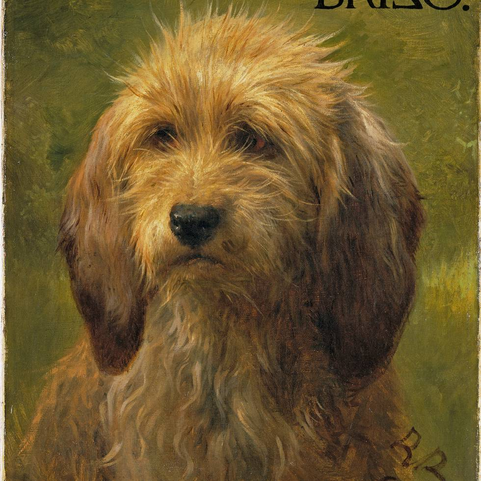 Brizo, A Shepherd's Dog by Rosa Bonheur, 1864 © The Wallace Collection, London.jpg